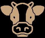 Teľacie mäso
